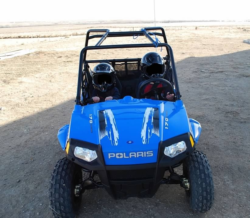 Search Results Used Polaris Buggy.html